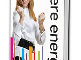mere energi bog