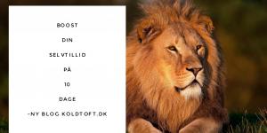 Billede af løve selvtillids citat