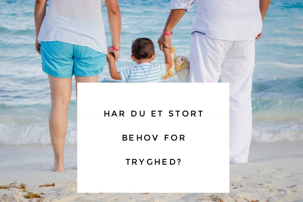 Stort behov for tryghed?