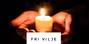 Fri Vilje