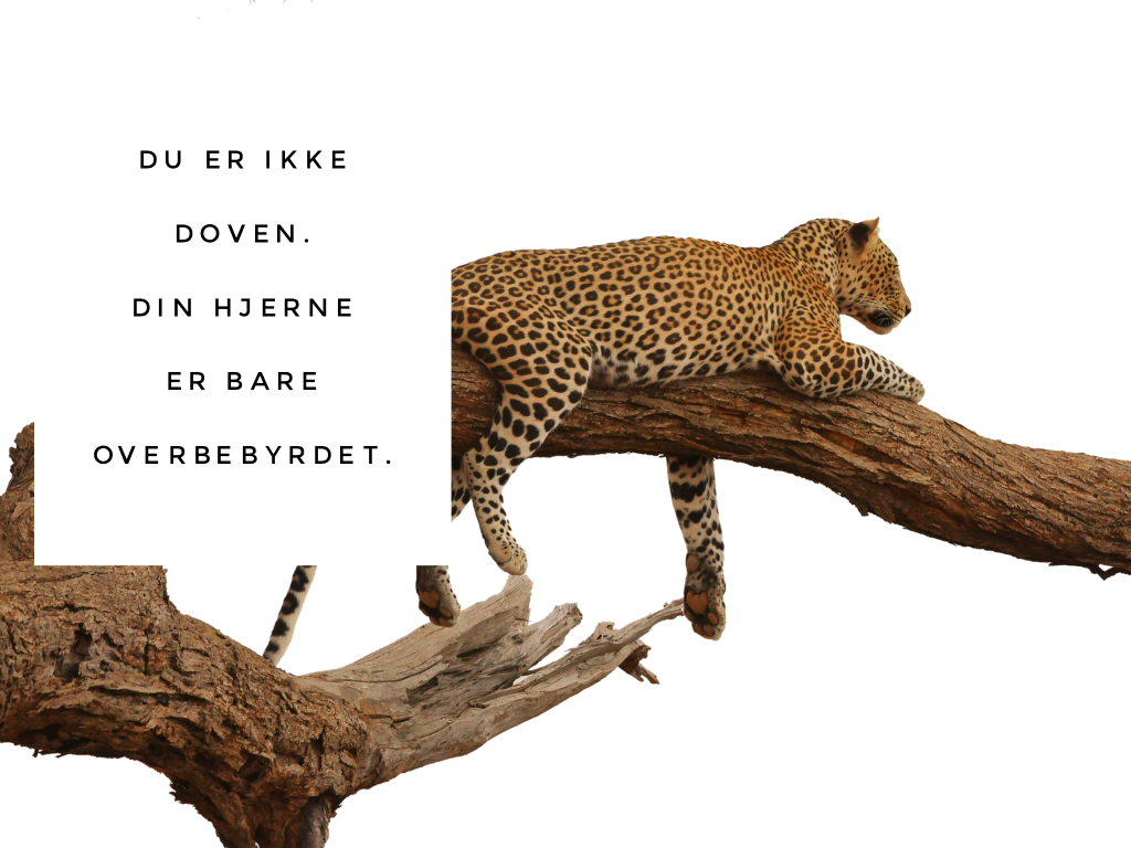 DuErIkkeDoven